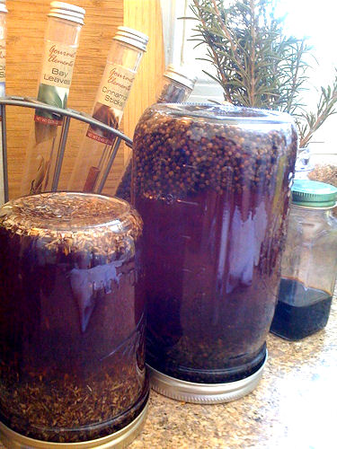 Echinacea and Vitex tinctures - rotate every one or two days to mix.