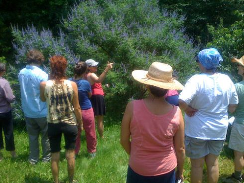 Kathleen speaking about vitex
