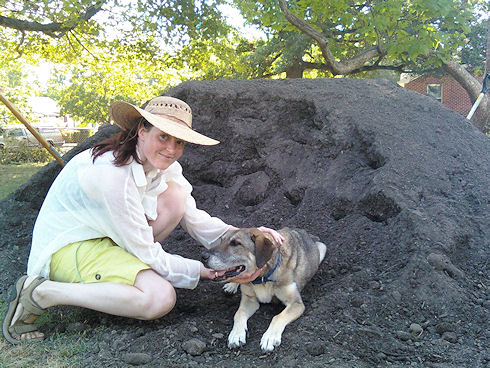 Me sweating, the dog chilling on the gi-normous pile of dirt. Smart dog.