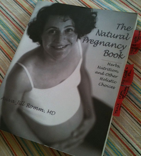 The Natural Pregnancy Book by Aviva Jill Romm